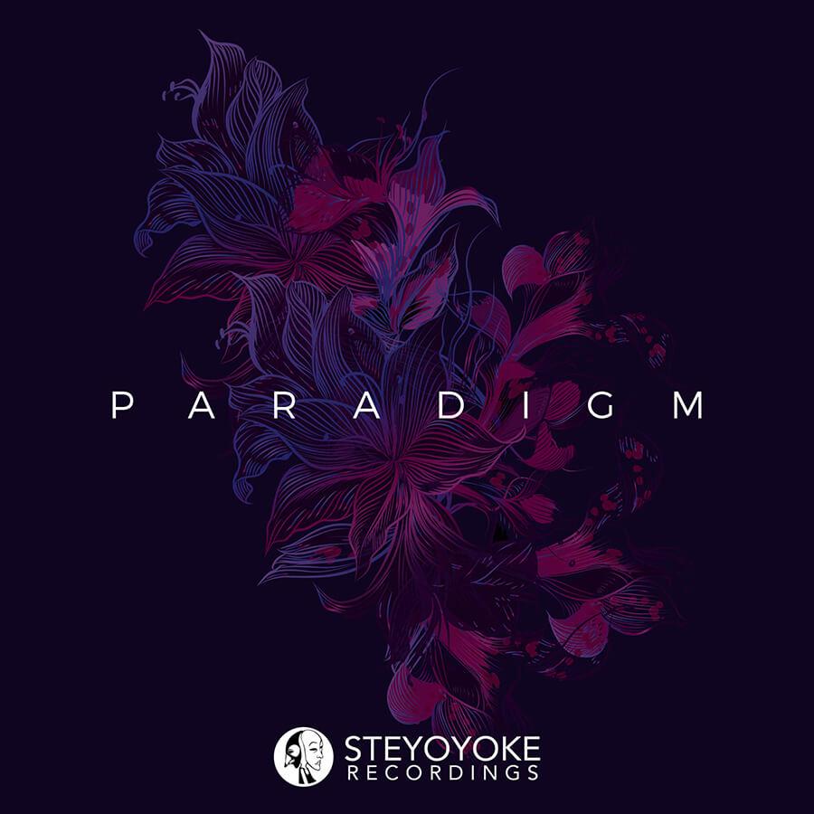 SYYKPARA002_Steyoyoke-Paradigm-02
