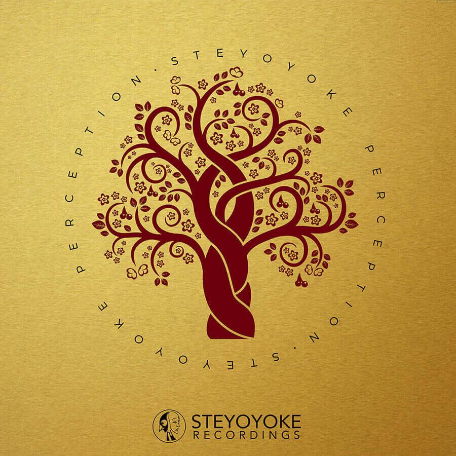 SYYKPERC003_Steyoyoke-Perception-03