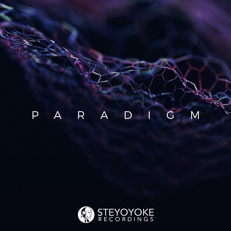 SYYKPARA006_Steyoyoke Paradigm 06