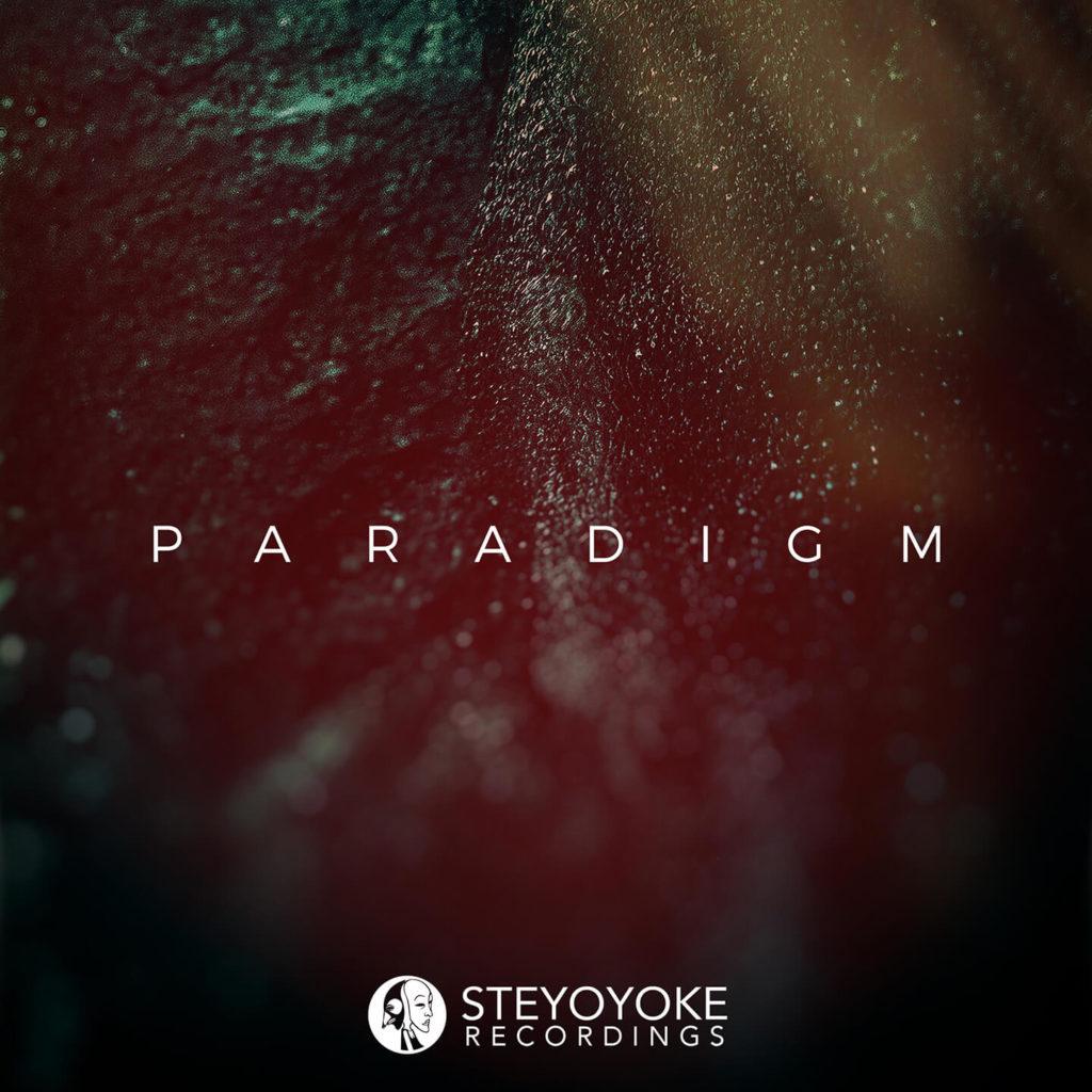 SYYKPARA007_Steyoyoke Paradigm 07