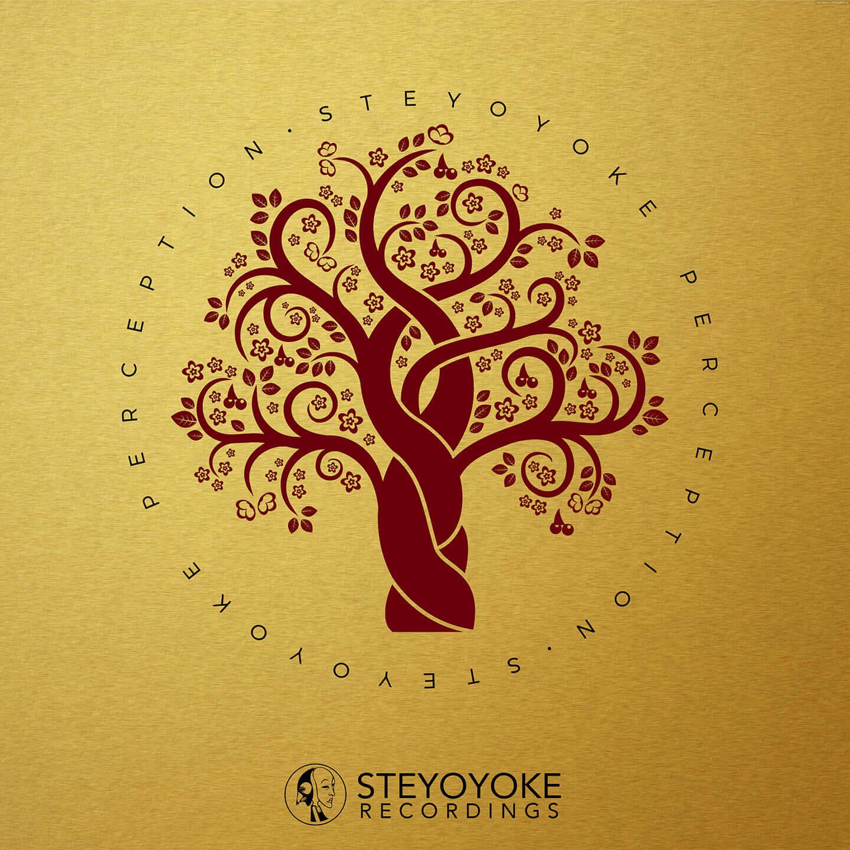 SYYKPERC003_Steyoyoke Perception 03