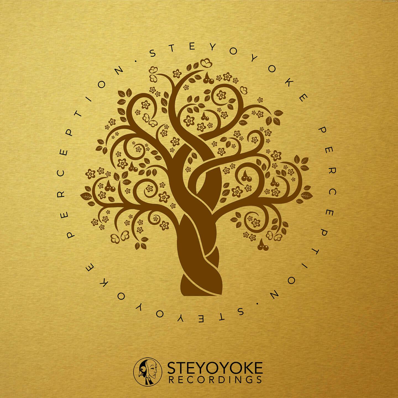 SYYKPERC004_Steyoyoke Perception 04