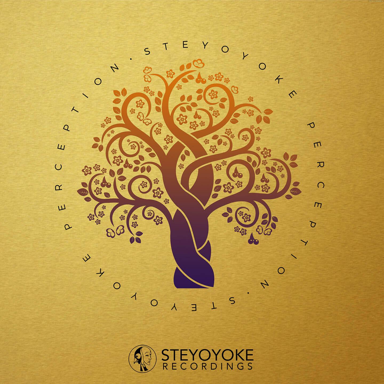 SYYKPERC006_Steyoyoke Perception 06