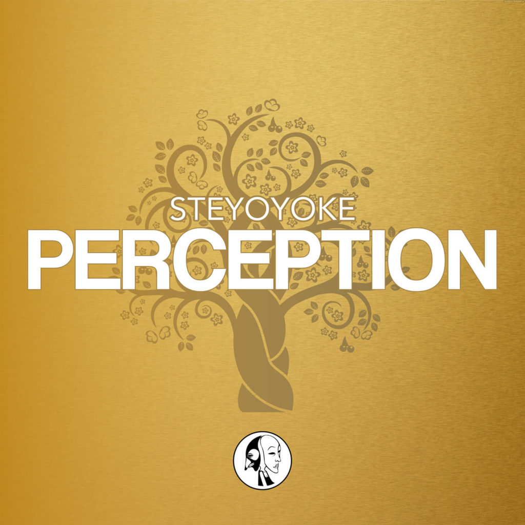 Steyoyoke-Perception-Spotify