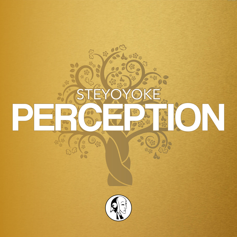 Steyoyoke-Perception-Spotify
